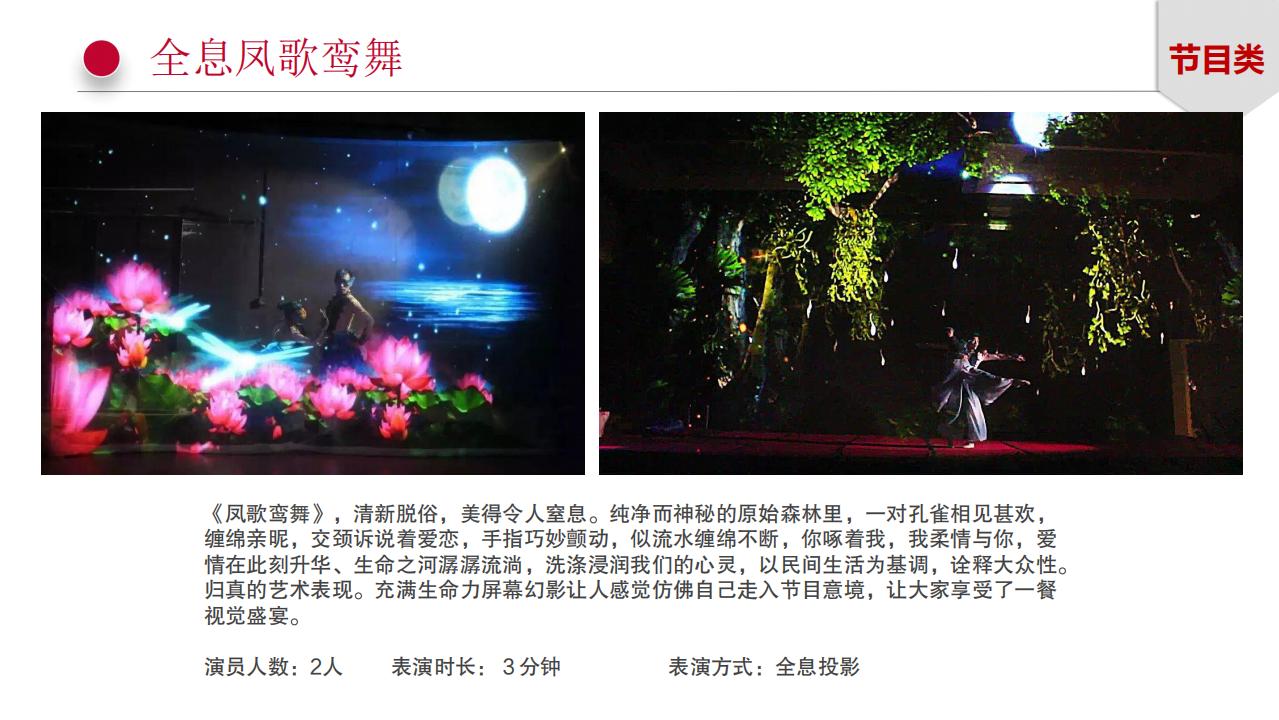 龙飞艺术团-舞台节目_76.png